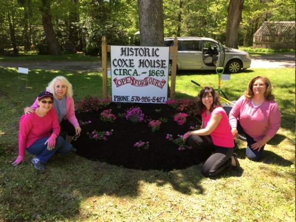 """""""Plant It Pink"""" Project"""